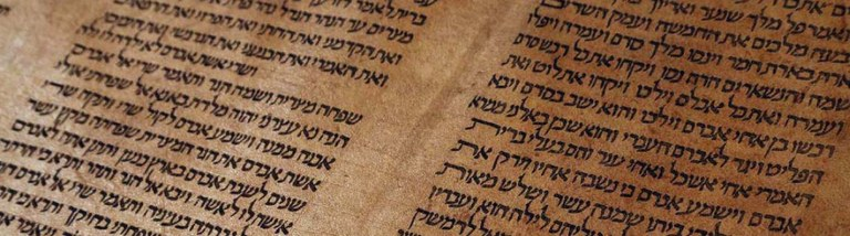 Torah Bologna