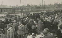 AUSCHWITZ - BIRKENAU 1940 -1945. Campo di concentramento e centro di messa a morte